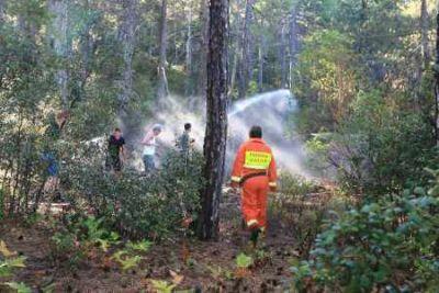 Übung zur Waldbrand löschen Quelle HAWK