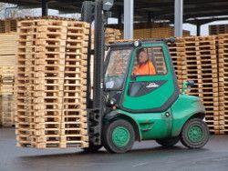 Transportmittel aus Holz sind umweltgerechte Allroundtalente. Foto: HPE