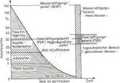 Schematische Darstellung der Bindungsformen des Wassers im Holz -ME;S.11-