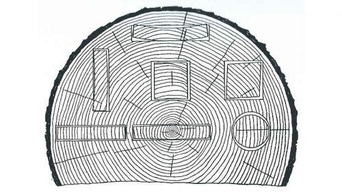 Formänderung von Holzquerschnitten