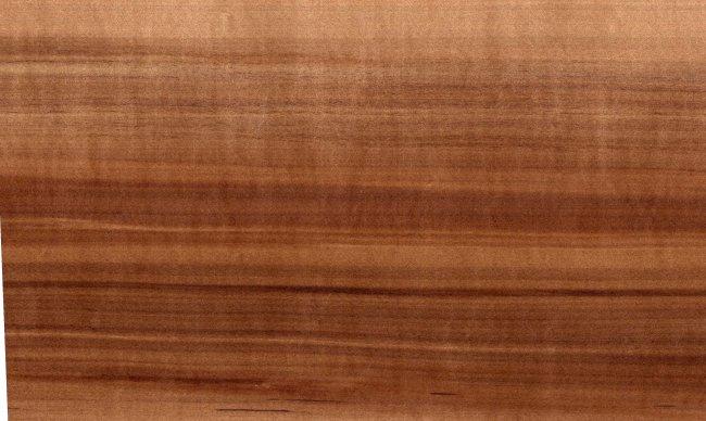 Möbel Holzarten 10 000 holzarten i holzwurm page holz mit how