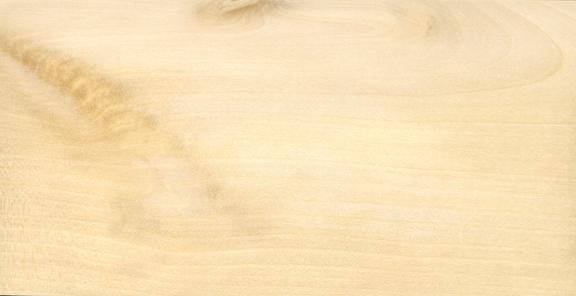 Holz Birke birke hänge holzwurm page holz mit how
