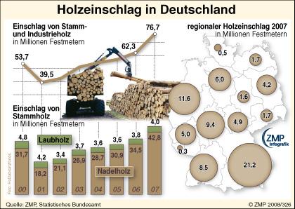holzeinschlag-D2007